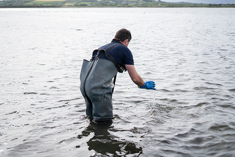 Fisherman cleaning Oysters