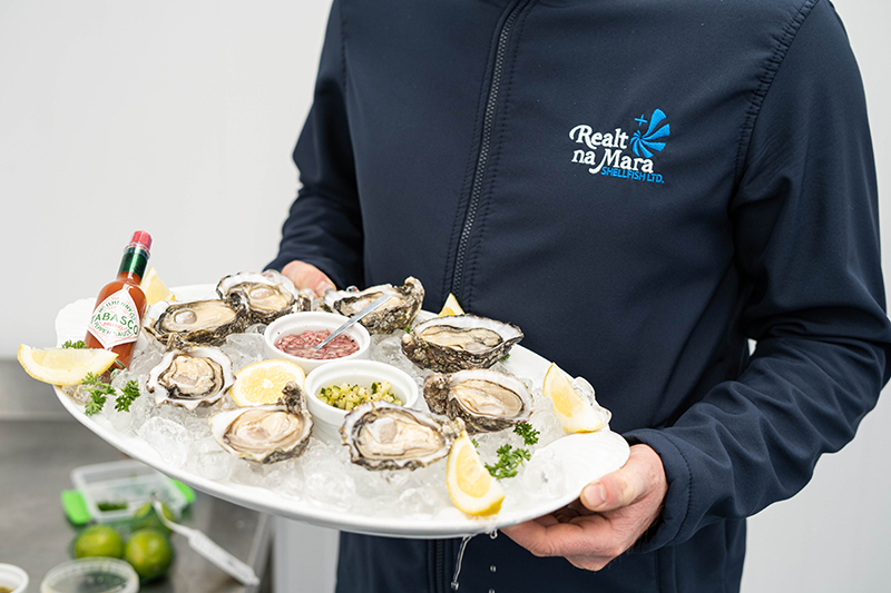 Fresh Oysters on tray
