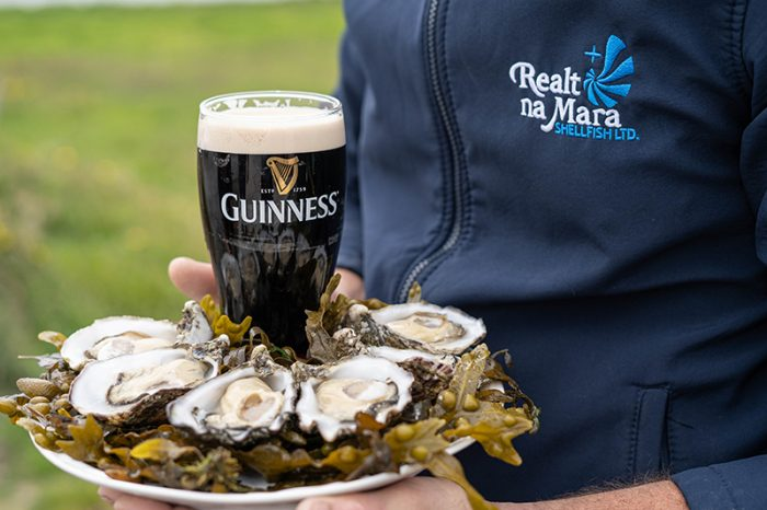 Oysters and pint of Guinness