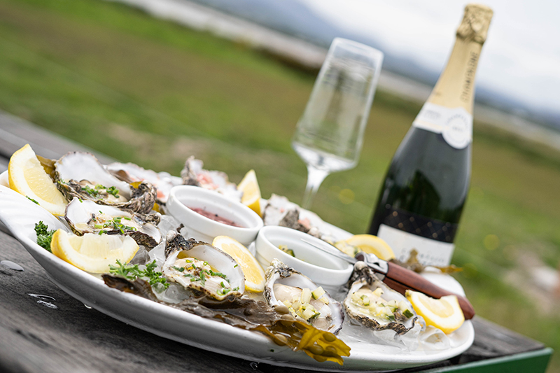 Oyster Tray with Wine