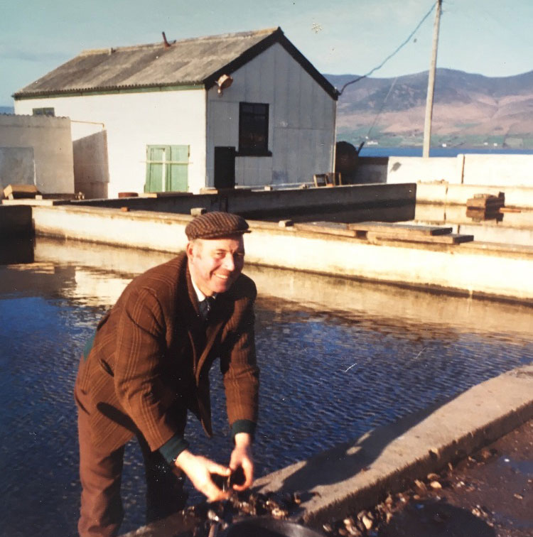Jimmy Casey working at the Cromane Mussel Station
